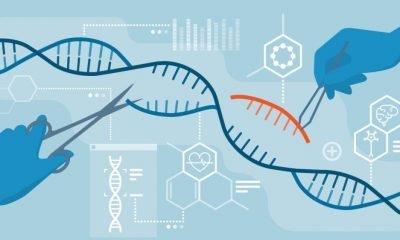Investing in CRISPR Therapeutics (NASDAQ: CRSP)